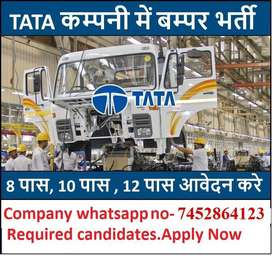 Hiring In Full Time Job In Tata Motors Anyone Can Apply -74528,64123