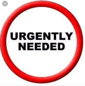 We urgently need