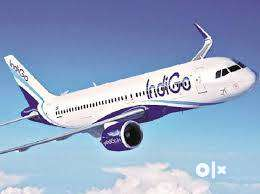 indigo Airlines Hiring for staff on roll vacancy for full time job  W 0