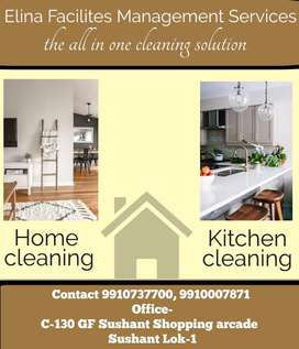 Cleaning , Paint Polish wood work Service