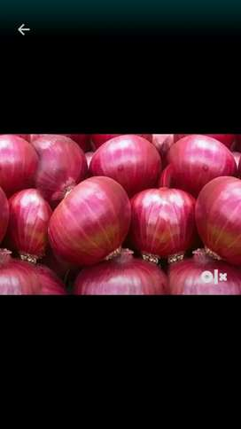 Nashik cha kanda (onion)  1 patti kanda. Only 500 for 50 kg