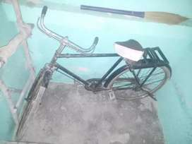 Good condition  Habbi carial