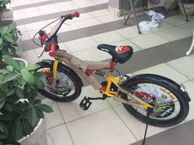 Sovereign kids bicycle angry birds made in thailand