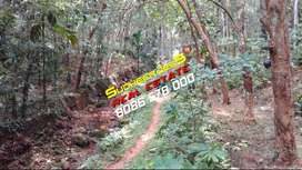 1 Acre & 68 Cents Of Land Suitable For Farm & Resorts,Near Neyyar Dam