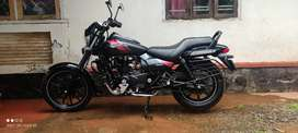 Avenger 220 abs. Intrested in exchange also