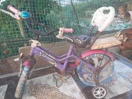 2 hand cycle
