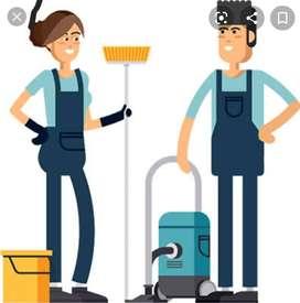Housekkeping or Receptionist