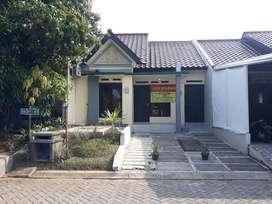 Sewa Rumah Semarang Timur Perumahan Elit Tamansari Majapahit 25 Jt/Thn