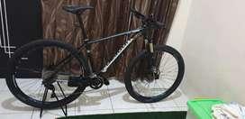 Dijual sepeda Polygon Xtrada 6 (Uk. L (29))