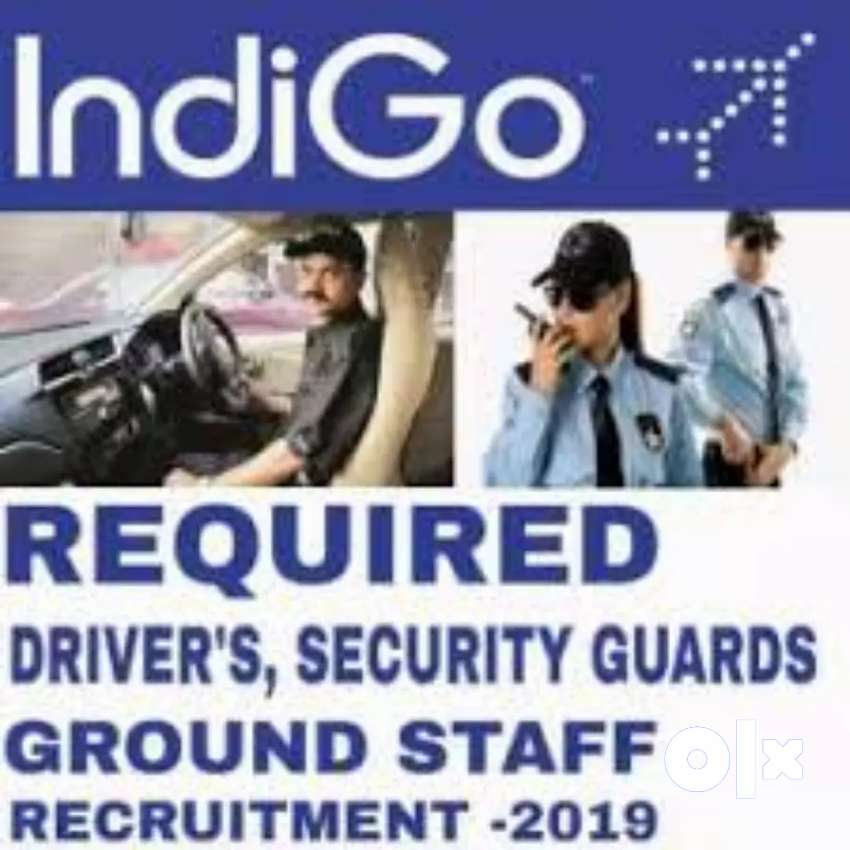 Indigo airlines Hiring full time jobs candidate 0