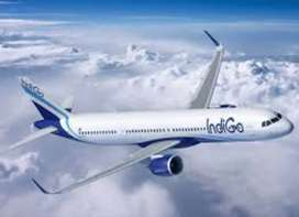 Required Staff In Indigo Airlines for full time