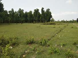 Plot for sale at arcadia garden new mussorie bypass dhoomnagar ddun