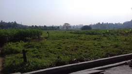 2 Acre Land in Desom - Aluva