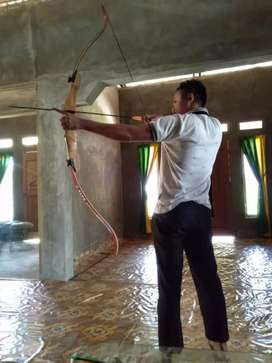 Panahan street fighter alvo archery