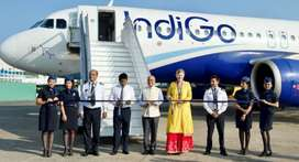 Airticketing REQUIRED Job For indigo airlines Apply Now Time Limit.