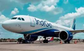 Urgent hiring for ground staff in Bhopal airport
