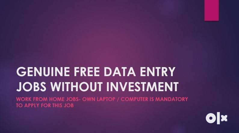 Earn Rs 35000 per month by working few hrs daily-Online Data Entry job 0