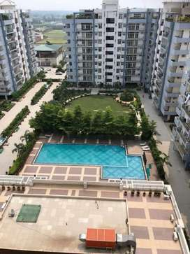 JALANDHAR HEIGHTS FLATS AVAILABLE in all varients