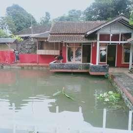 Jual rumah semi vila+kolam ikan
