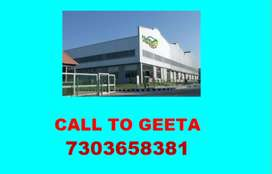 Branch, Company, Factory, Store, Warehouse Assistant and Manager-&