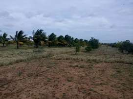 Farm land 10 units available