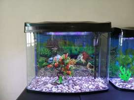 Imported Fish tank  available at low price