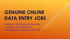 Online Data Entry / simple Typing -Work from Home jobs - Apply Now.
