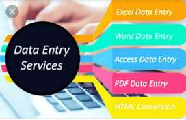 Data Entry Operator cum Call Assistant