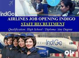 Recruitment !!! in Indigo Airlines on Roll vacancy male & female