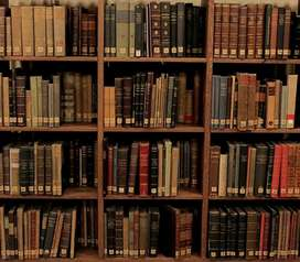 Collection of hundreds of books on different sibjects