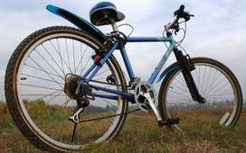 Imported seattled Mariners bicycle
