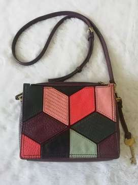 Tas fossil size small