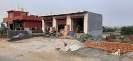 free hold plot in noida sector 115..