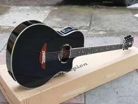 Gitar Akustik elektrik Apx LC prener