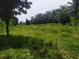 Tanah Murah Kutalimbaru 2000 meter (80x25)