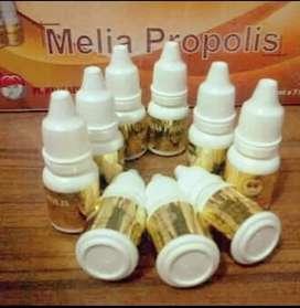 Propolis original per box isi 7 btl