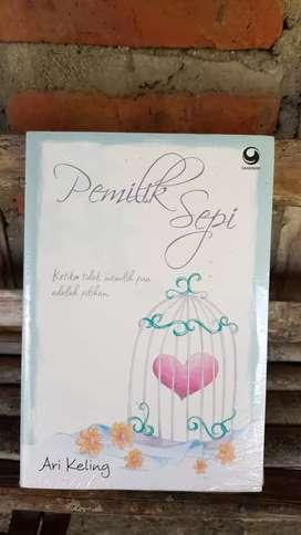 Jual Novel Pemilik Sepi (Romantis)
