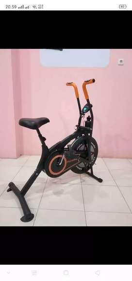 Sepeda platinum murah