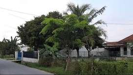Tanah luas SHM strategis - Pasar 9 Tembung Pinggir Jln Besar Sidomulyo