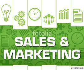 Sales and Marketing Persons