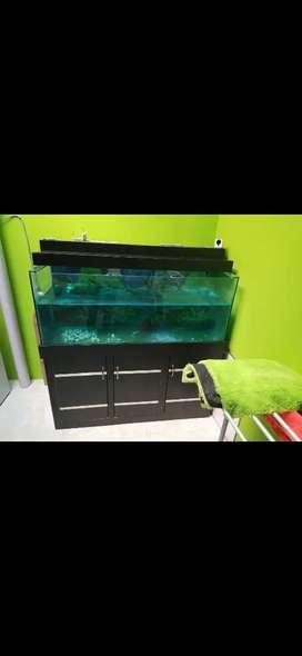 Aquarium meja interior