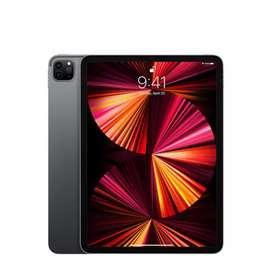 Apple iPad pro 11inch 512Gb