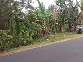 Dijual sebidang tanah dipinggir jalan, lokasi strategis