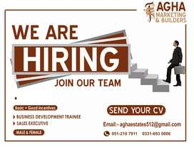 Agha Marketing and Builders offering jobs in marketing sector