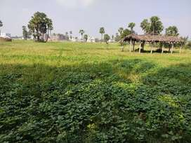 One acre land for sale near to bypass road and near to busstand