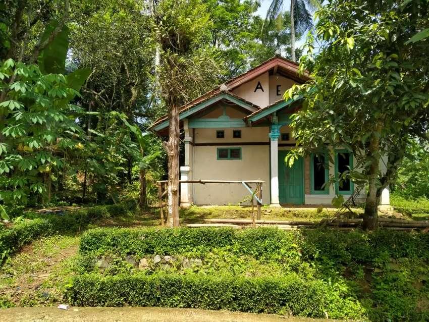 Ingin rumah dikampung, suasana desa? Rumah hrg 225 juta tanahnya luas. 0