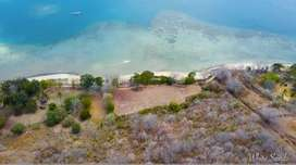 Land 150 are for sale beachfront in Sekotong, Southwest Lombok