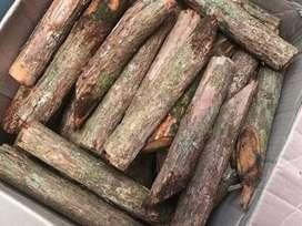 kayu bajakah buat obat kanker
