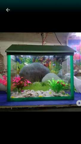 Fish tenk h
