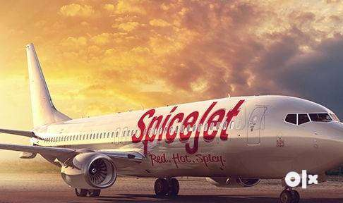 Airlines Job - spice jet Airlines Opened @ CCE , Cabin Crew, Luggage D 0